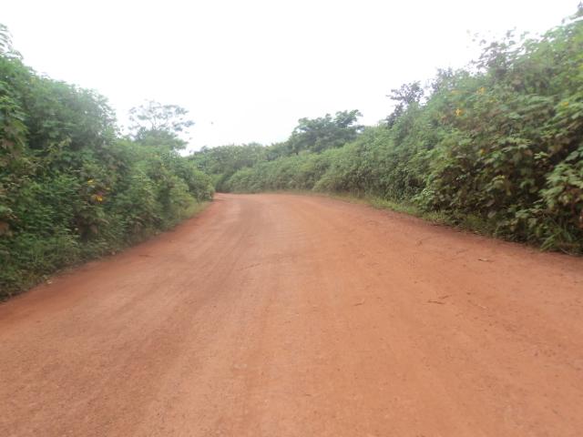 sur la route de Kent-zou à l'Est cameroun